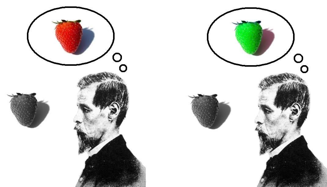Existenta. Semantism si Sintaxa. - carte proprie  - Pagina 2 Inverted_qualia_of_colour_strawberry